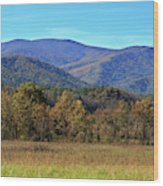 Autumn Colours In Great Smoky Mountains National Park Wood Print
