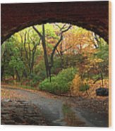 Autumn Fall In Central Park Wood Print