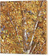 Autumn Golden Leaves Wood Print