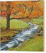 Autumn In Vermont G Wood Print