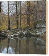 Autumn On The Kings River Wood Print