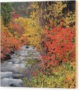 Autumn Rapids Wood Print