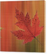 Autumn Spirit Panoramic Wood Print