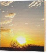 Autumn Sun Rising Over Barren Trees Wood Print