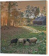 Autumn Sunset At The Old Farm Wood Print