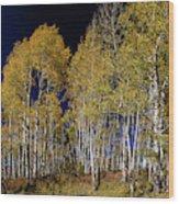 Autumn Walk In The Woods Wood Print