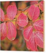Autumnal Hues Wood Print