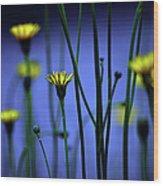 Avatar Flowers Wood Print