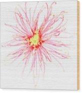 B760/1832 Wood Print