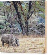 Baby And Parent White Rhino In Lake Nakuru Wood Print