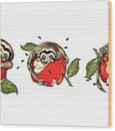 Baby Sloth Meets Apple Wood Print