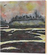 Back Bay After Sunset Wood Print