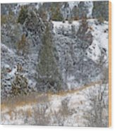 Badlands Winter Wood Print