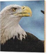 Bald Eagle And Fledgling  Wood Print