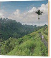Bali Pathway Wood Print