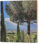 Barberini View Wood Print