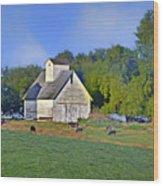 Barn - Silo - Cows Wood Print