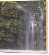 Base Of Waimoku Falls Wood Print