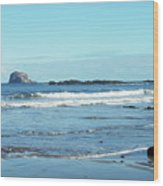 Bass Rock And Beach At North Berwick Wood Print
