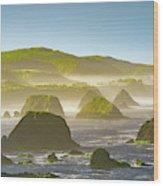 Bay In California Wood Print
