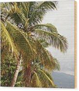 Beach In Haiti Wood Print