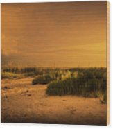 Beach Storm Front Wood Print