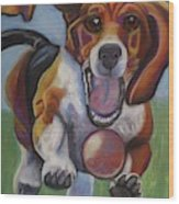Beagle Chasing Ball Wood Print