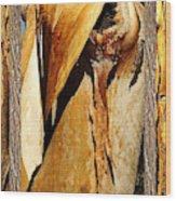 Beautiful Bark  Wood Print