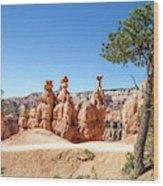 Beautiful Bryce Canyon Wood Print