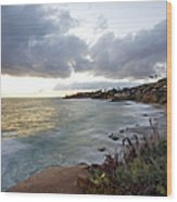 Beautiful Laguna Coast After Sunset Wood Print