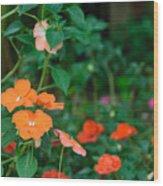 Beautiful Orange Flower, Naturally Wood Print