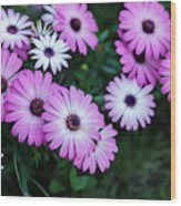 Beautiful Pink Flowers In Grass Wood Print