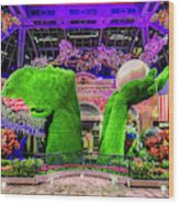 Bellagio Conservatory Spring Display Ultra Wide 2 To 1 Aspect Ratio Wood Print