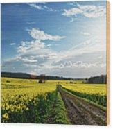 Belvoir Fields Wood Print