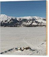 Bennett Lake At Carcross Yukon Wood Print