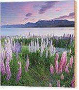 Berry Dawn At Lake Tekapo, New Zealand Wood Print