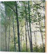 Beyond The Mist Wood Print