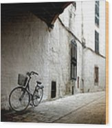 Bicycle Leaning Wall Wood Print