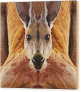 Big Boy Red Kangaroo   Wood Print