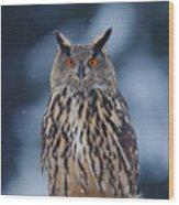 Big Eurasian Eagle Owl With Snowflakes Wood Print