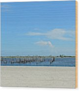 Biloxi's Pristine Beach Wood Print