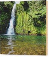 Bioko Waterfall Wood Print