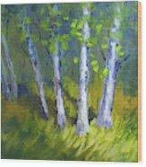 Birch Light Landscape Wood Print
