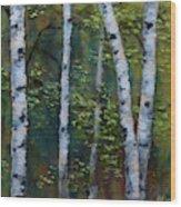Birch Portrait II Wood Print