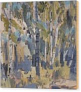 Birch Trees Along The Pond De Melle Wood Print