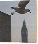 Bird Takeoff Wood Print