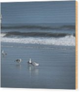 Birds And Waves Wood Print