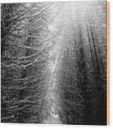 Black And White Winter Forest, Vertical Wood Print