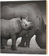 Black Rhinoceros Baby And Cow Wood Print