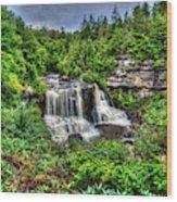 Blackwater Falls, Blackwater Falls State Park, West Virginia Wood Print
